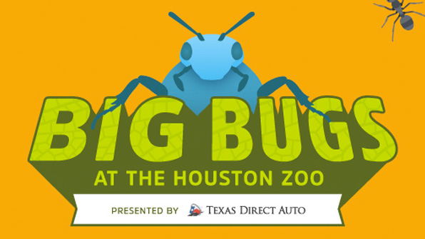 Houston Zoo, May 26 through Sep 3, 2018