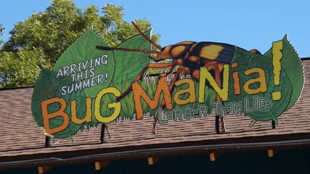 San Antonio Zoo: Bug Mania! (2017)