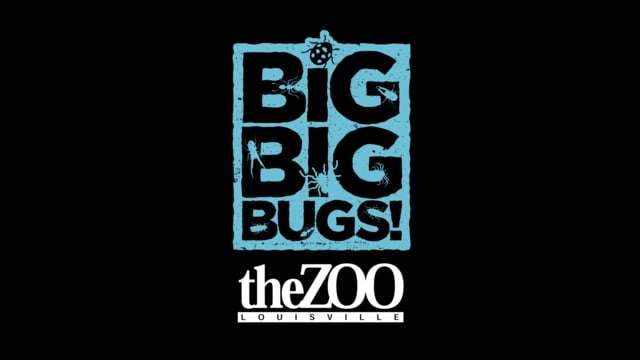 Louisville Zoo: Big Big Bugs (2014)